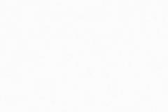 arctic-white-1024x246