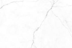 estatuario-e01-1024x246